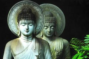 Limestone Buddhist state in Wat Pha Sawang Boon Nakornnayok Thai photo