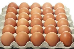 muchos huevos marrones