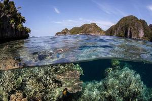 islas de arrecife y piedra caliza