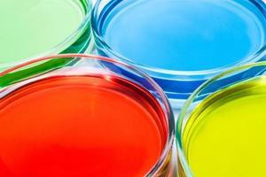 conjunto de placas de Petri con líquido coloreado
