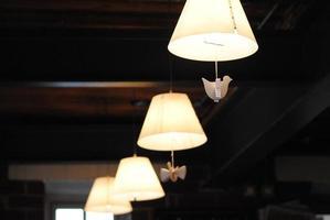 luces de aves foto
