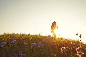 Summer meadow backlit Wanderer photo