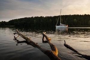 puesta de sol sobre el lago. árbol muerto en agua y yate foto