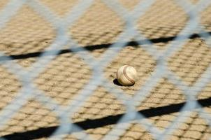 Baseball and fence photo