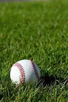 béisbol foto