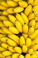manojo de plátanos maduros de fondo foto
