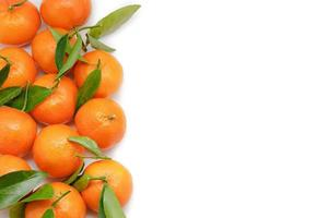 Tangerines isolated on white background with copy space