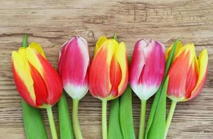Colorful tulips on wooden surface with copy space