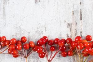 Red viburnum and copy space for text on wooden background photo