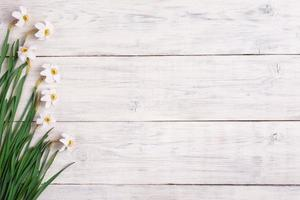 Daffodils on wooden background, copy space photo