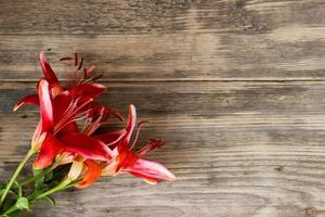 Beautiful lily on wooden background  with copy space