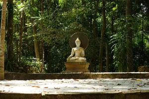 White Buddha statues. Meditate and relax. photo