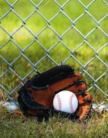 Baseball in Glove on Grass photo