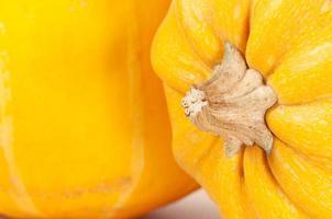 Pumpkins close up