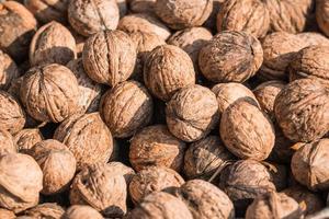Close-up of walnuts photo