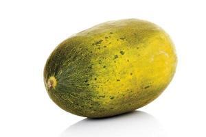 Futuro melon, close-up