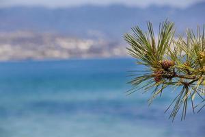 Mediterranean Close-Up Scene