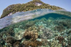 récif et île calcaire
