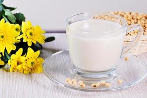 soy milk with soy beans photo
