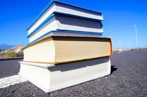 en el concepto de literatura vial