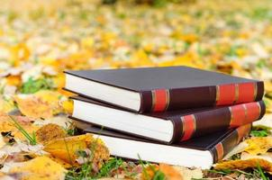 Books on the autumn leaves