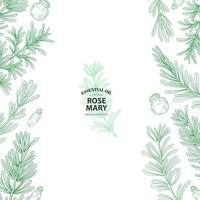 Rosemary Sprig Borders in Outline Style