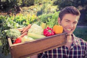 apuesto agricultor con canasta de verduras