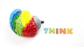 Modèle d'anatomie cérébrale carte couleur avec lettre pense