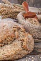 Domestic  bread photo