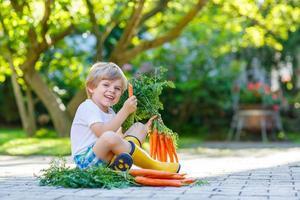 Cute little kid boy with carrots in domestic garden