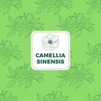Camellia Sinensis Green Vintage Seamless Pattern