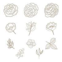 conjunto de flores y hojas vintage