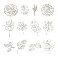 Vintage Flower and Plant Set  vector