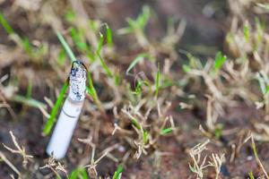 Image of cigarette is in the lawn