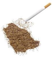 cigarrillo y tabaco con forma de arabia saudita (serie) foto