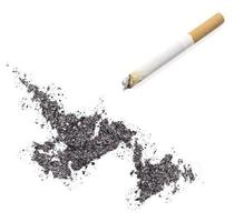 Ash shaped as Newfoundland and a cigarette.(series)