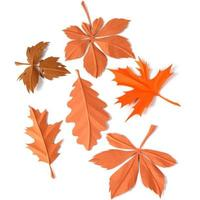Paper foliage photo