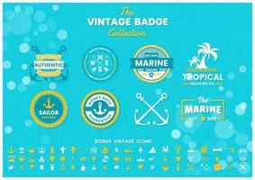 Vintage blaue tropische Sommer Logos gesetzt vektor