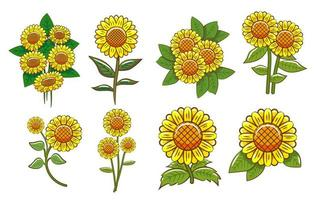 Sunflower collection set vector