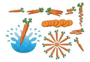 Carrot Vegetable Set