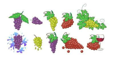 Grape Bunch Set vector
