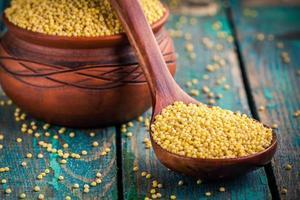 semillas de mijo orgánico en cuchara y tazón de cerámica closeup foto