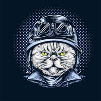 chat portant un casque de moto vecteur