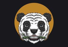 Panda Eat bamboo  vector