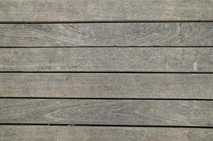 Wood Pattern Trunk Texture photo