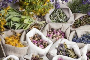 Medical herbs photo