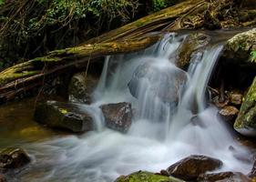 Waterfall in deep rain forest jungle photo