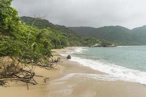 ondas batendo na praia isolada da selva do Caribe.