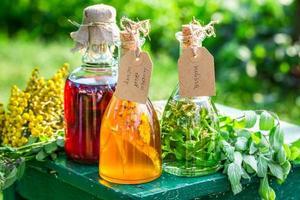 tintura curativa en botellas con hierbas y alcohol foto