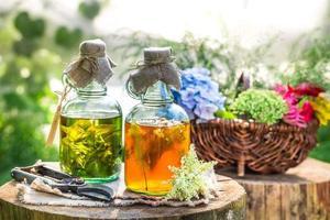 tintura curativa en botellas con alcohol y hierbas foto
